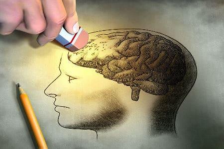 Нарисованные мозги человека