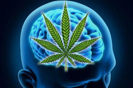 лист марихуаны