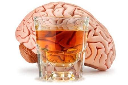 Мозг алкоголика и здорового человека фото