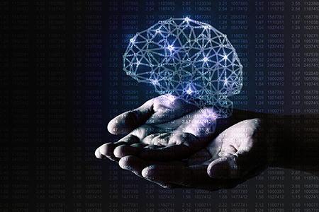 макет мозга в руках