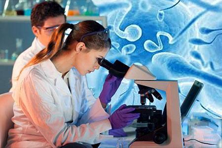Мужчины умеренное еженедельное употребление алкоголя может снизить качество спермы