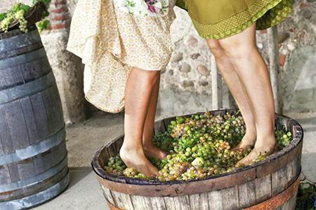 женщины давят сок из винограда в бочке