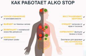 Инфографика: как работает АлкоСтоп