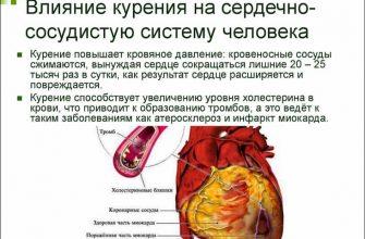 Курение крайне негативно влияет на сосуды человека