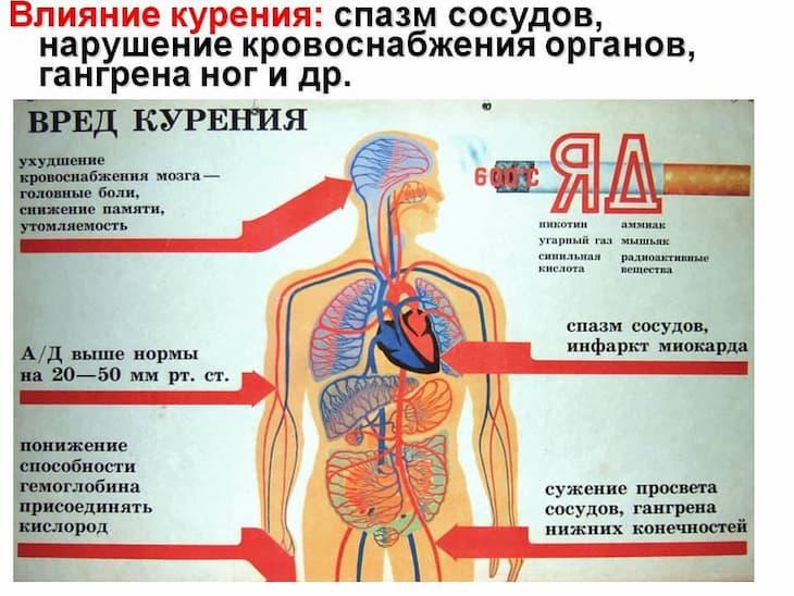 Курение осложняет течение ВСД