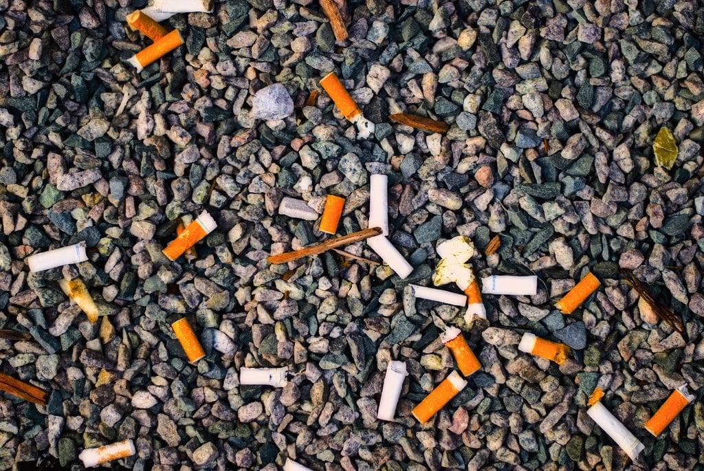 Курение сигарет также вредит окружающей среде