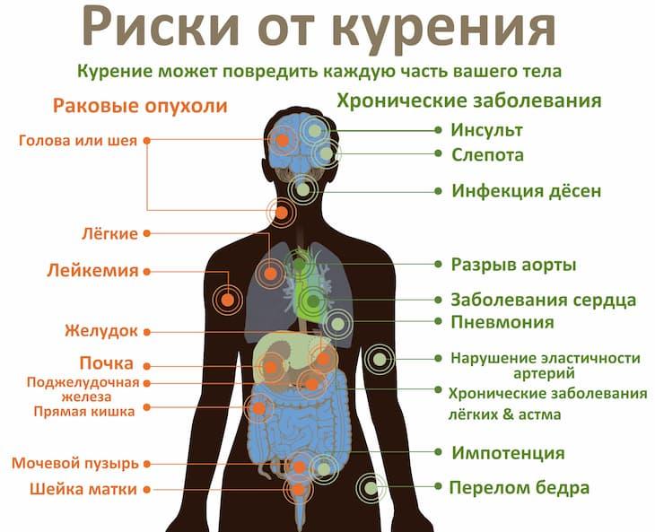 Курение сокращает продолжительность жизни курильщика