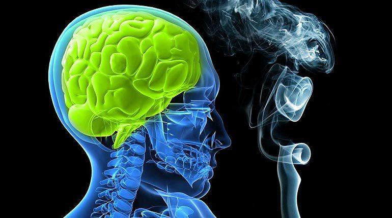Курение вредно для мозга