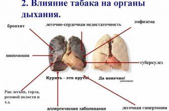 Влияние курения на органы дыхания крайне негативно