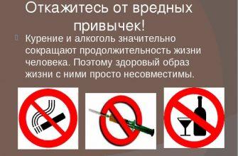 Вред курения и алкоголя на организм влияет на все сферы жизни